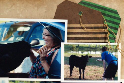 Moxxie Down on the Farm tags Susie Bentz